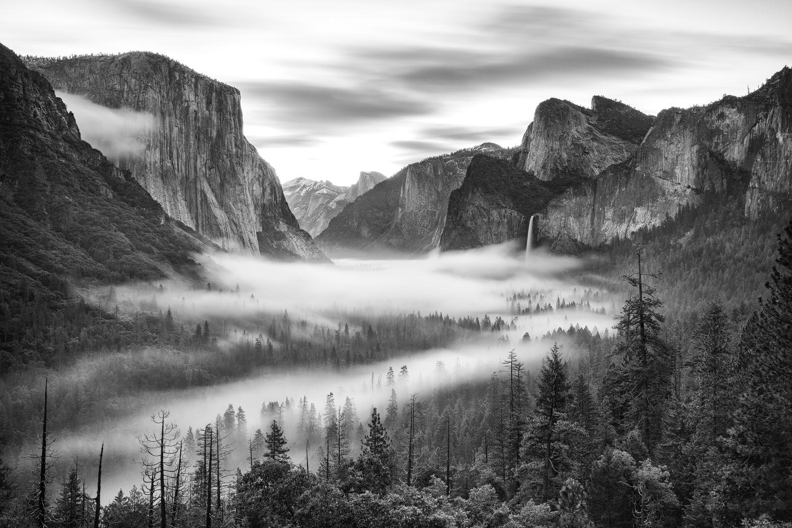 Black & White - Photo 4