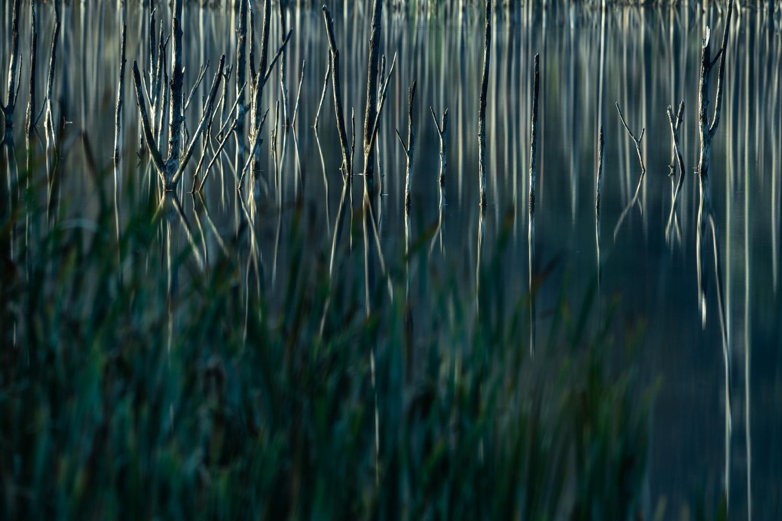 Cuejdel Lake - Photo 22