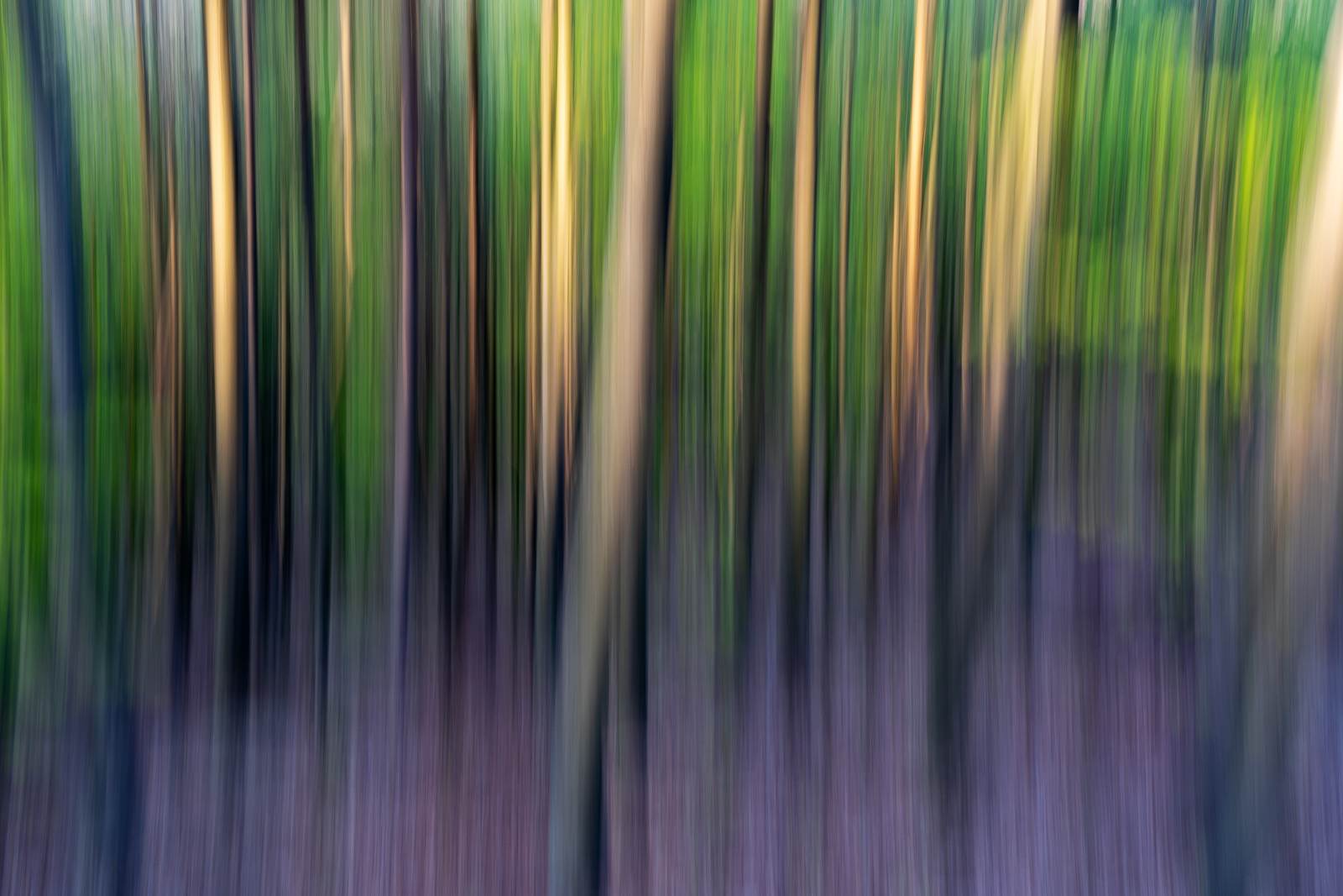 Nature - Photo 3
