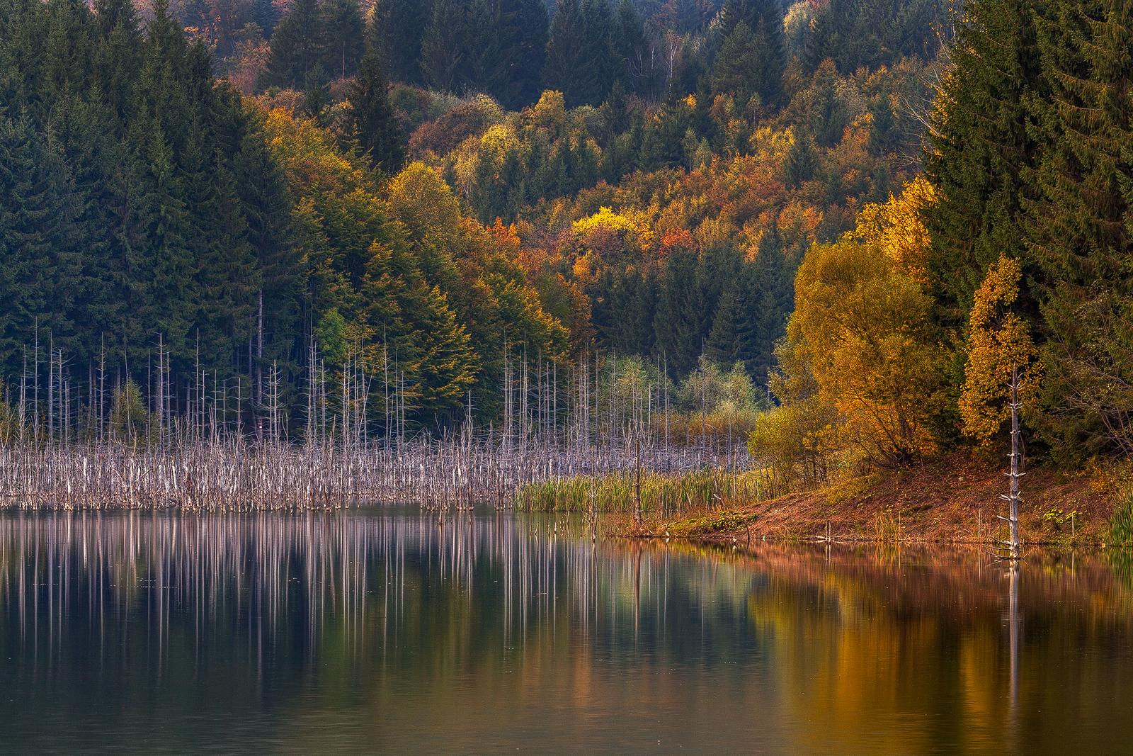 Landscape - Photo 27
